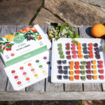 Martha Stewart CBD Wellness Gummies – 15 Flavor Sampler Lifestyle